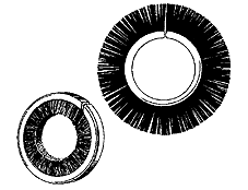 web_special_brush_forms_discs.png